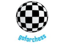 Go-For-Chess-1aa746dcd26bb123bf72b580366eb835